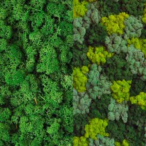 ufficio-green